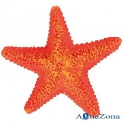 Набор декораций для аквариума «Морская звезда» Trixie 8866