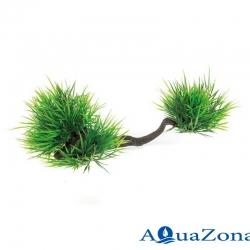 Аквариумное растение на корне Aquael В2108