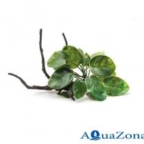 Аквариумное растение на корне Aquael В2001