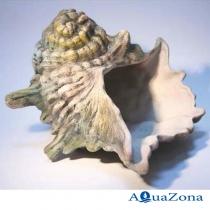 Грот для аквариума ZE Раковина ШН2